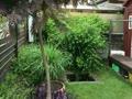 風の見える庭